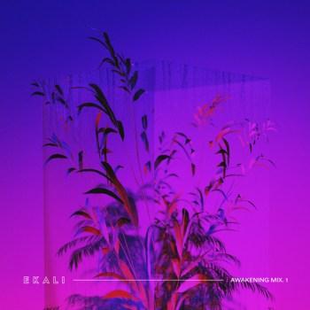Ekali Awakening Mix 1