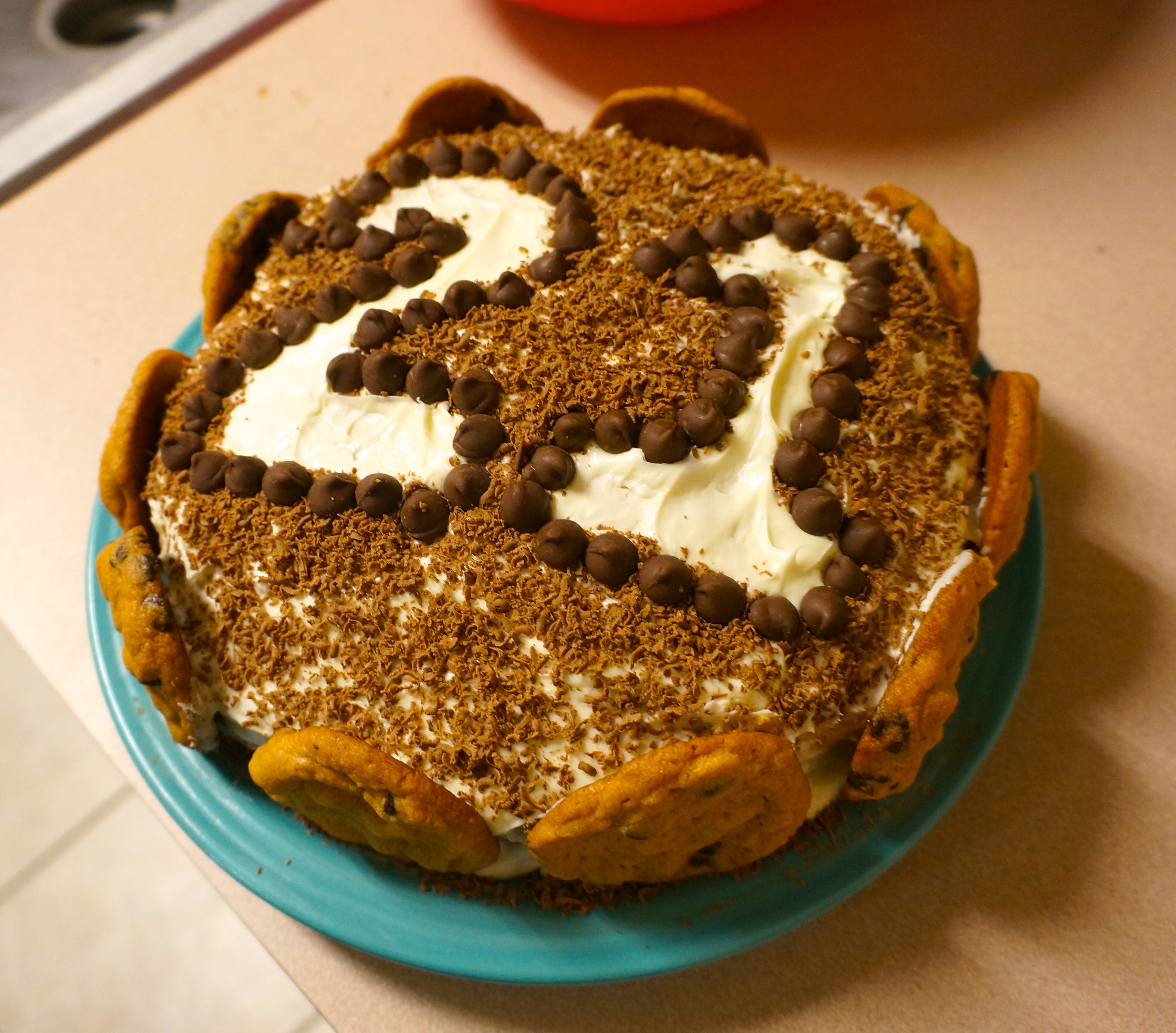 Homemade Birthday Cake Were Calling Shenanigans