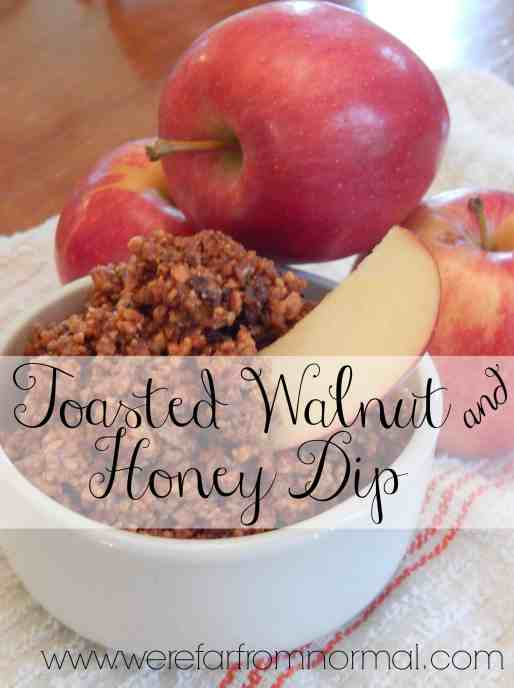 Toasted Walnut and Honey Dip. Great for dipping apples, or as a topping for yogurt or oatmeal.