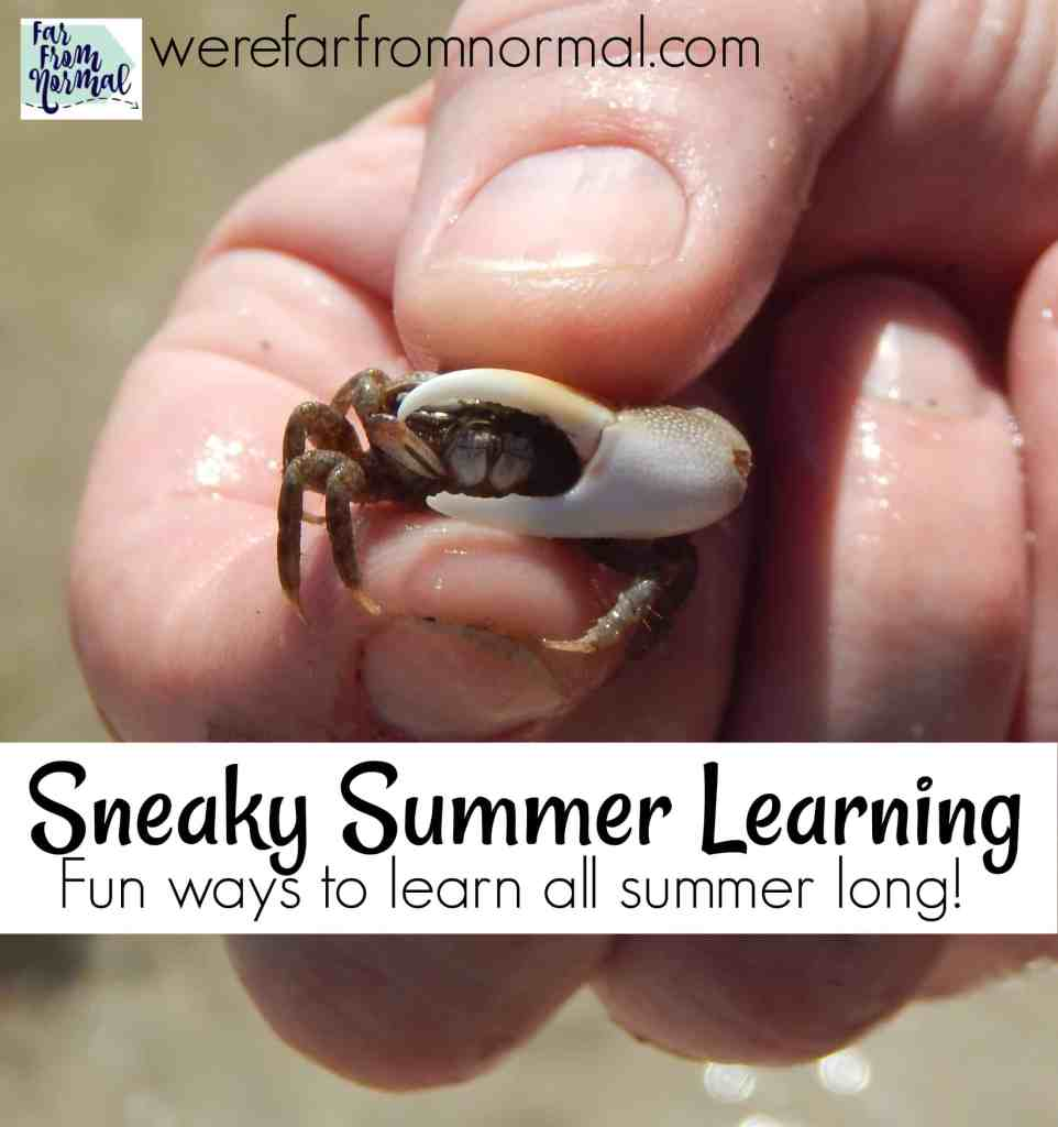Sneaky Summer Learning