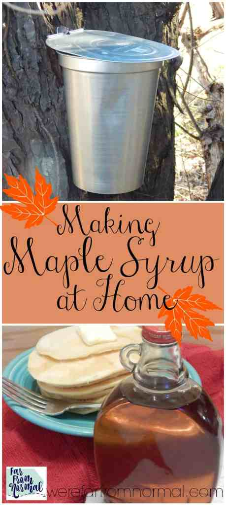 I've always wanted to make maple syrup!! Even if you only have one maple tree you can make syrup at home, it's such a fun project to do with kids & the results are delicious!