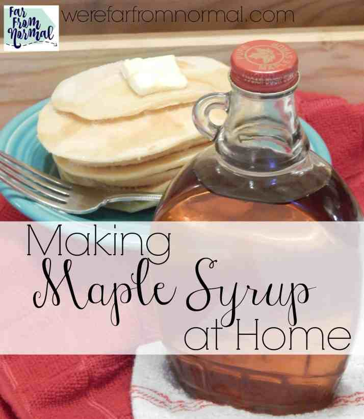 Making maple syrup is such a fun activity! Even if you only have one maple tree you can tap it an make delicious homemade syrup!