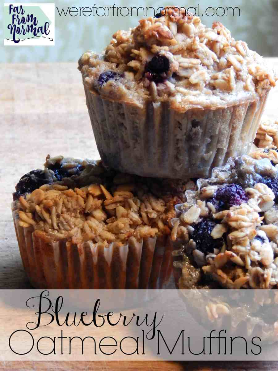 Blueberry Oatmeal Muffins