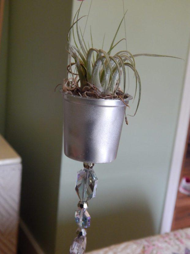 k-cup planter