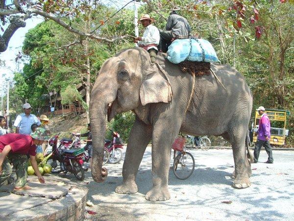 cambodja031