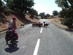 griekenland09