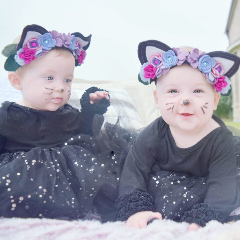 Halloween 2016 Pictures Kitty Cats Kitty Ears Felt Floral Headband