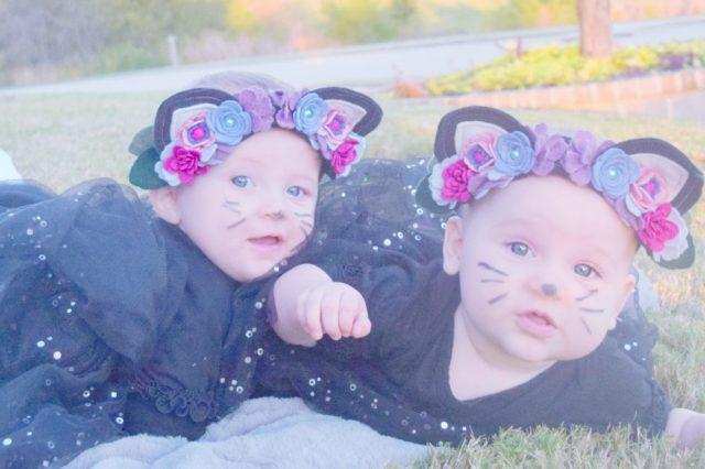 Halloween 2016 Pictures Kitty Cats Kitty Ears Felt Floral Headband