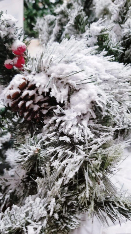 add snow bond to your tree