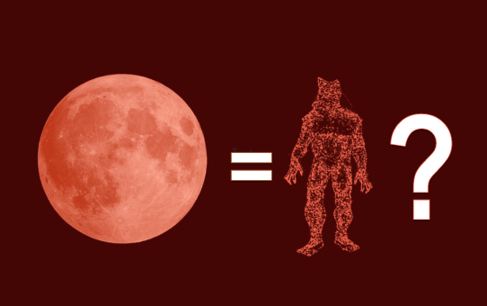 WereWatchers - Haircare - Blood Moon Mythbusting - Feature