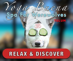 Yoga Buena Spa For Werewolves - Tulum