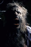 "Watch short film ""Bad Moon Rising"", or ""why you don't keep werewolves in captivity"" featured image"