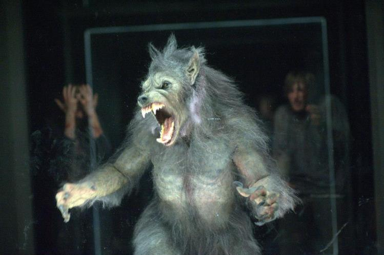 "Revisiting the werewolf from ""The Cabin in the Woods"" featured image"