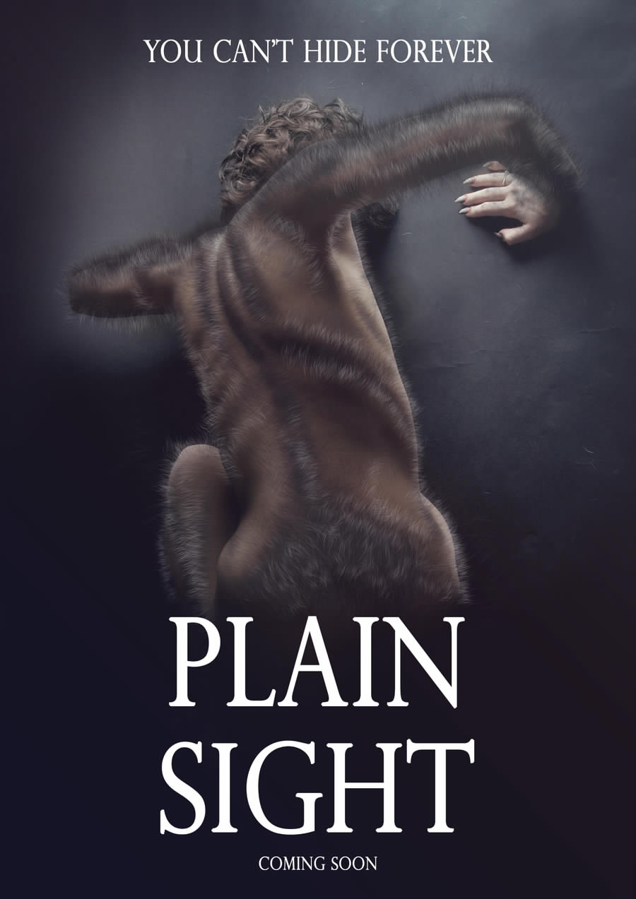 plainsight_teaser_poster_by_soulmarch-d8sfeix