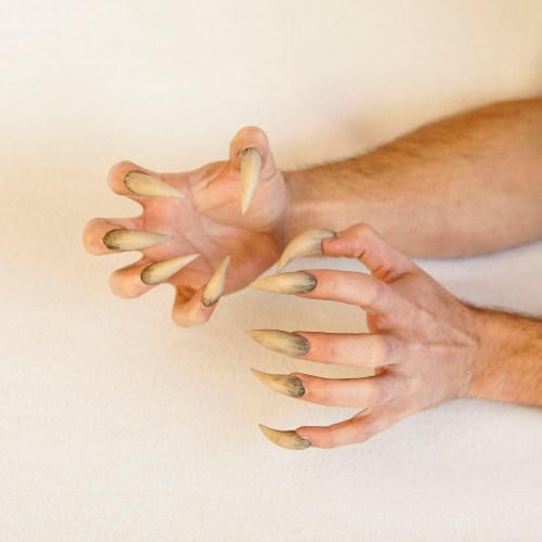 Complete your werewolf costume with these resin werewolf claws featured image