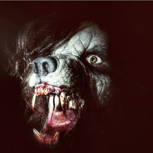 """Hair of the Dog"" full werewolf makeup preview featured image"