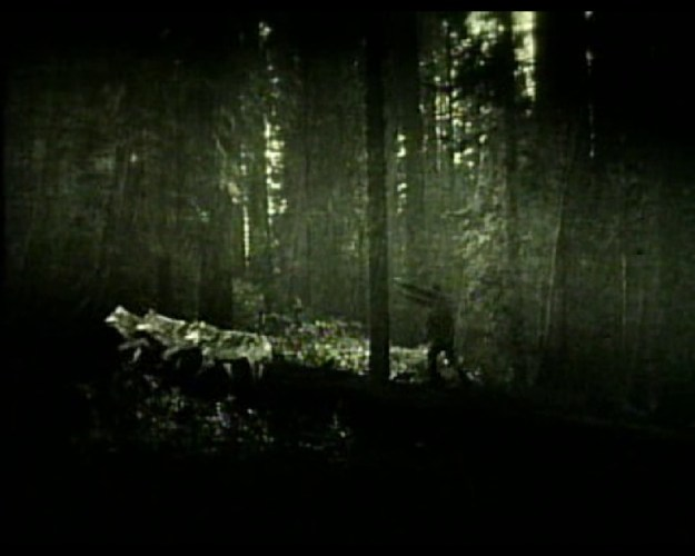 Full Moon Features: Wolf Blood (1925) featured image
