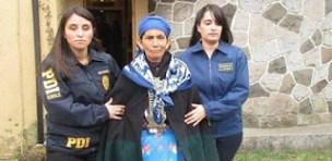 mapuche-represion