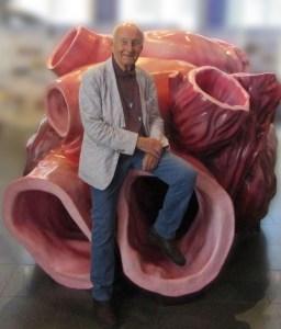 Ware grootte blauwe vinvis hart. Gewicht 250 kg, slagvolume 220 liter, 8 slagen per minuut. Hoorbaar tot op 2 km afstand. New Bedford Whaling Museum, september 2018.