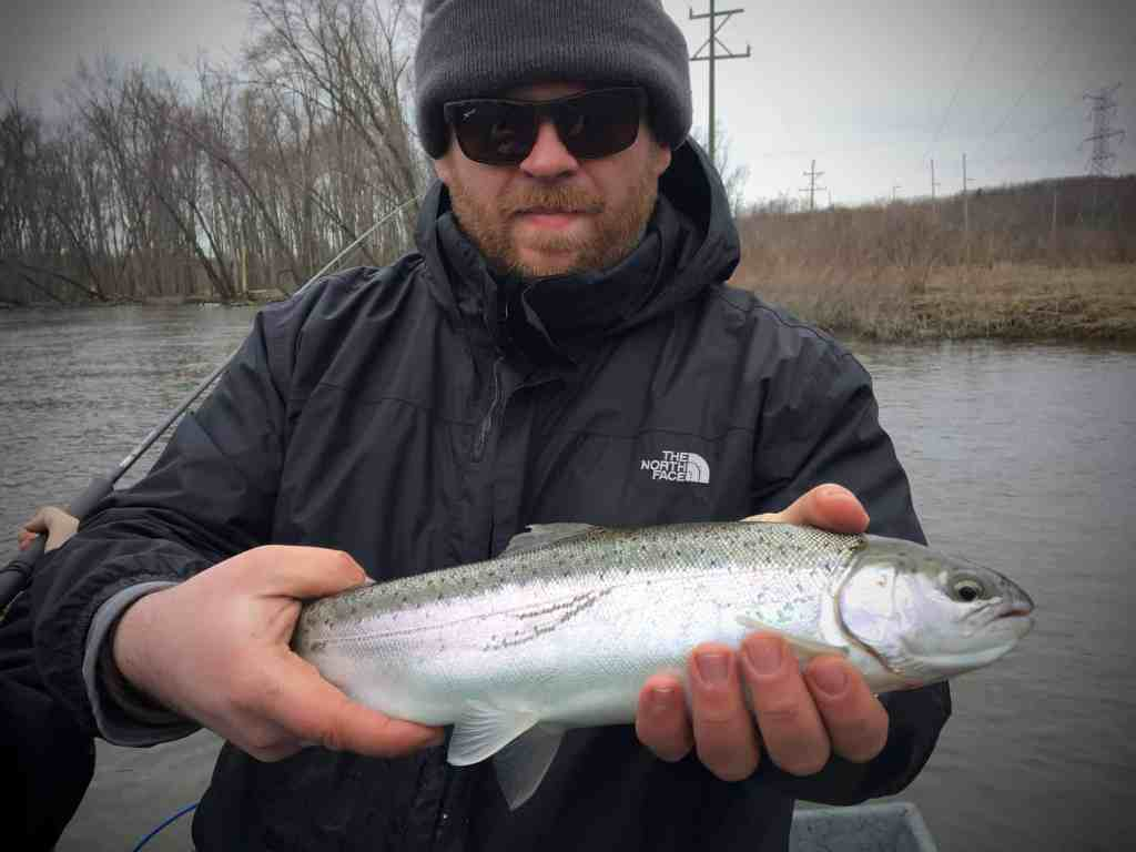 Man holding a skippy steelhead from the Kalamazoo River