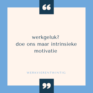 intrinsieke motivatie