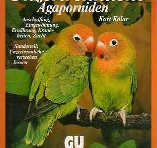 Unzertrennliche Agaporniden