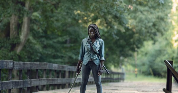What The Walking Dead: Adaptation 87