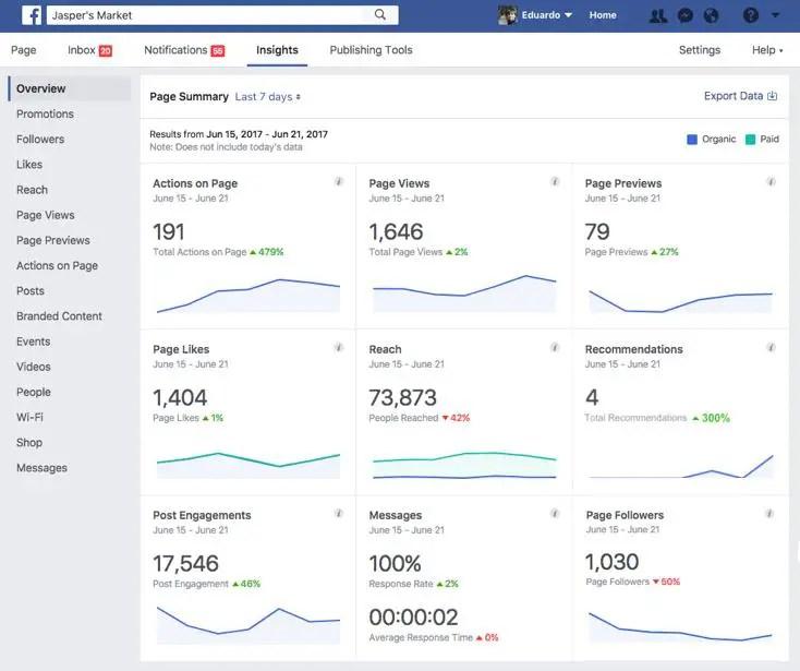 wersm facebook new page insights