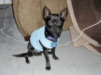 Sweaters | wesandsarah.com