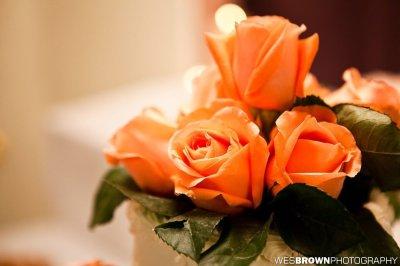 0481_5264_20111209_Bill_Wedding- Facebook