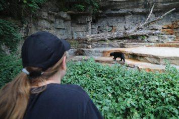 St Louis Zoo-3180