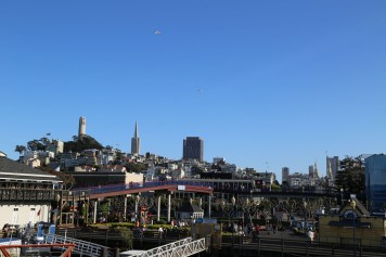 San Fran Pier 39-6964