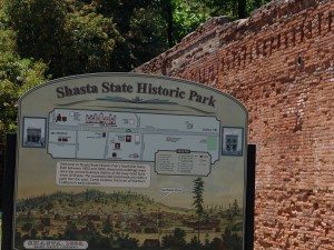 Shasta--11