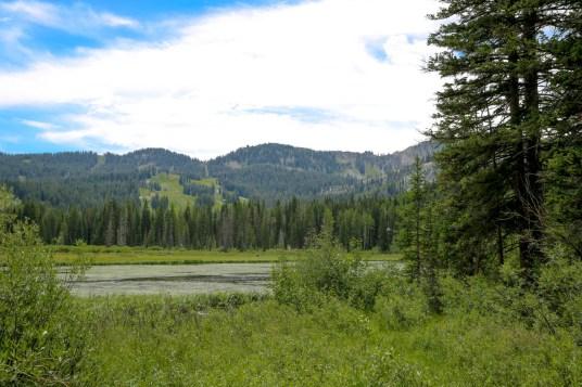 Silver Lake - Solitude -0347