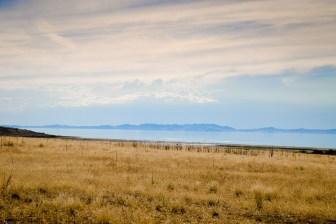 Antelope Island-0581