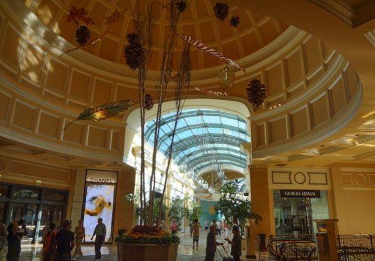 Bellagio Conservatory-05358