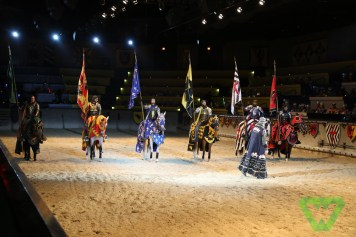 Medieval Times-7339