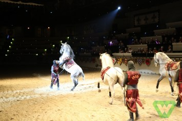 Medieval Times-7346