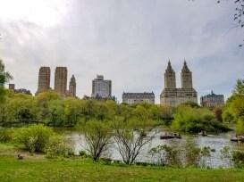 NY Central Park