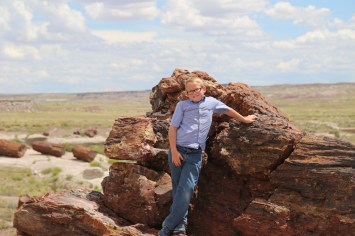 Petrified Forest and Painted Desert