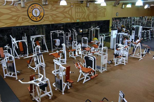 Gold' Gym Renovation - Susan Wesley
