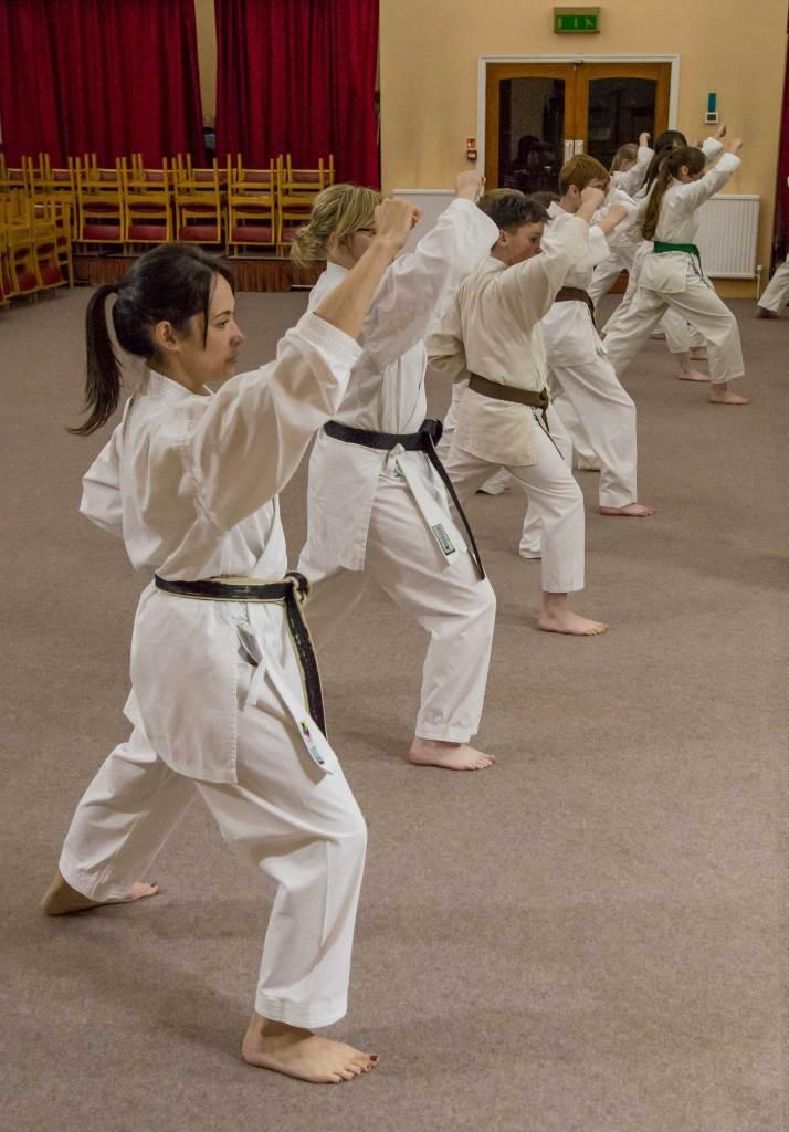 Seishin-Ryu Karate Club @Wesleys