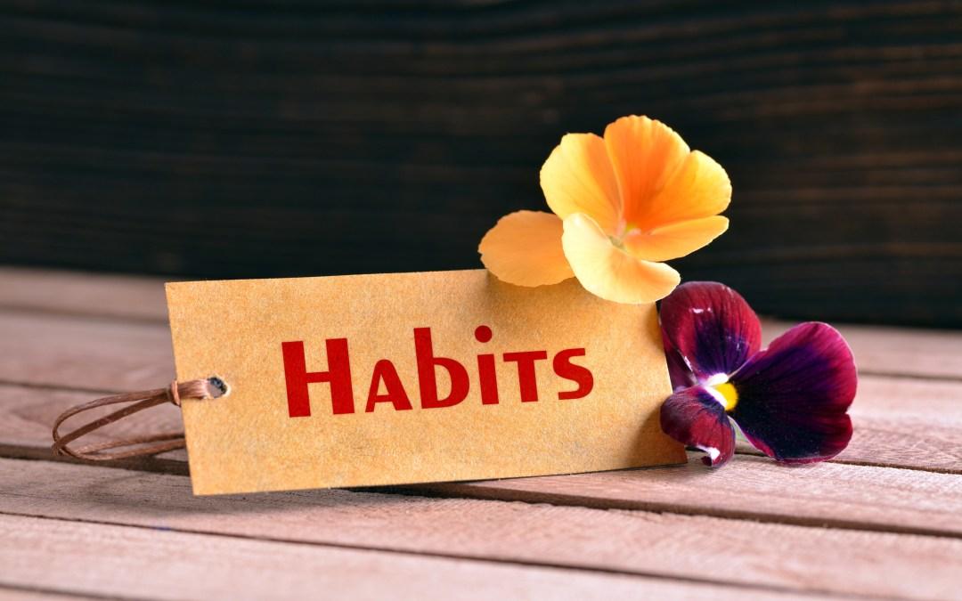 Leadership Habits