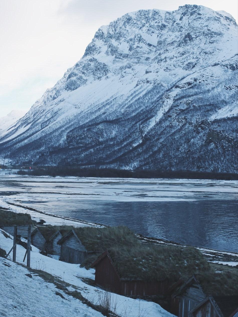 Natura Norwegia5.JPG