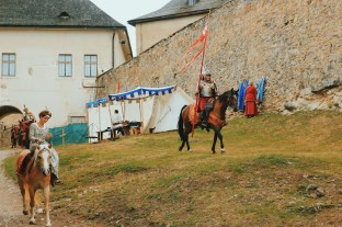 Zamek w Starej Lubowni