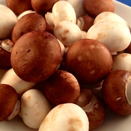 Tagliatelle Funghi 2
