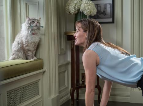 Jennifer Garner durfte am Set nur selten mit einer echten Katze drehen...