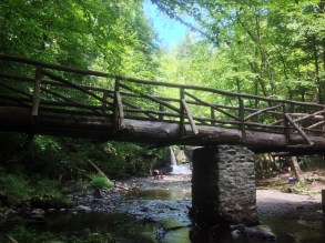 deer leap bridge