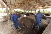 After the flush: How a project in Ghana is turning human waste into an economic resource