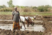 Can you hear me? Covid-19 and building women's resilience in northern Ghana